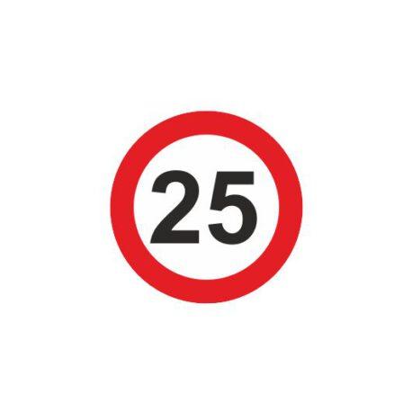 dames hoodie 25 logo