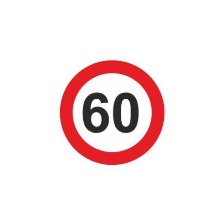 dames hoodie 60 logo