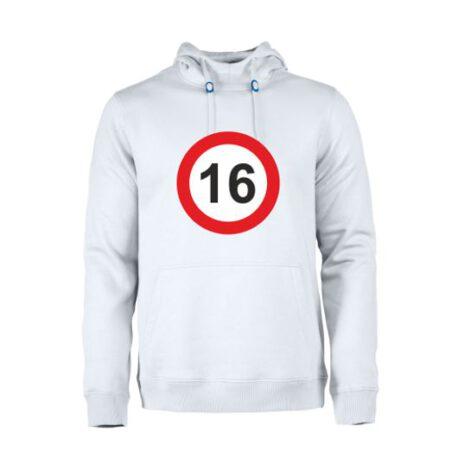 heren hoodie 16