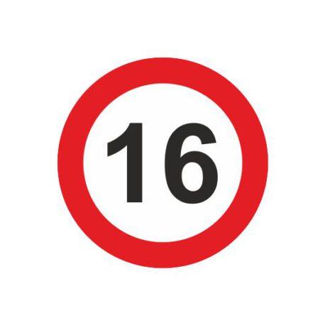 heren shirt 16 logo