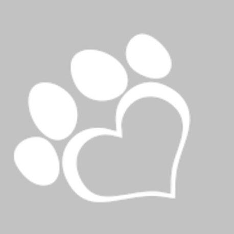 hondpoot afb 2