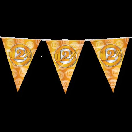 party-vlag-12.5